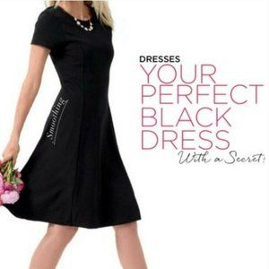 Ruby Ribbon Fit and Flare Dress in Black Size Sma